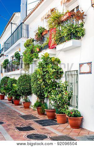 Picturesque Street Of Rancho Domingo
