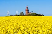 picture of lighthouse  - The lighthouse of Bastorf (Germany) with canola field. ** Note: Visible grain at 100%, best at smaller sizes - JPG