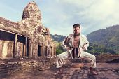 picture of karate  - Karate fighter in karate stance - JPG