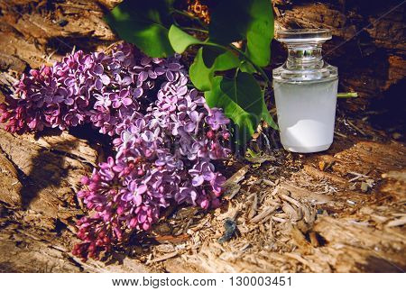 Lilac Perfume With A Bouquet Of Lilac On White Wooden Background