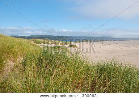 Oregon-Strand