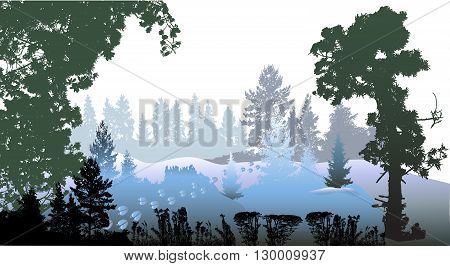 Panoramic winter forest landscape with silhouettes of trees, plants and reindeer footprints