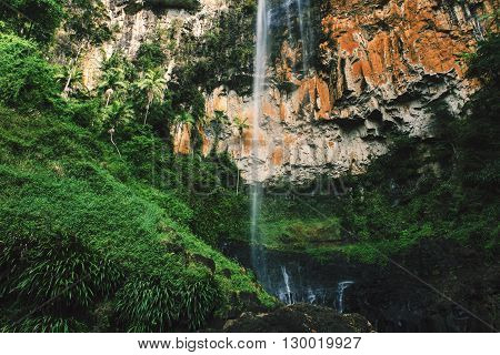 Purling brook Falls at Springbrook National Park in Queensland.