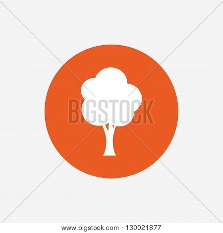 Tree sign icon. Forest symbol. Orange circle button with icon. Vector