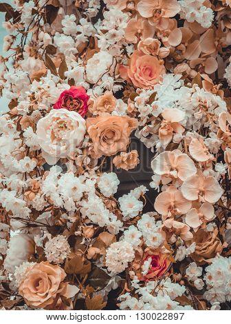 Flower background. Roses background. Pink flower. Close-up flowers. Flower wallpaper. Floral texture. Flower pattern. Flower decoration.
