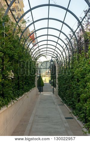 green arcs made of plants above pathway