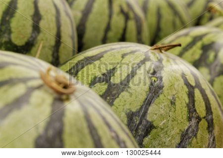 Watermelon arranged together side by side on fruit stall