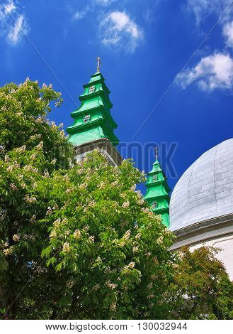 Cathedral belltowers and chesnut tree in blossom. Chessnut flowers