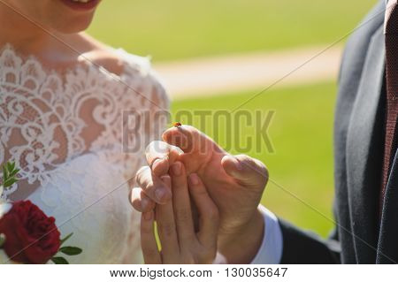 Ladybird on finger. Bride and groom are looking at ladybug. Ladybird going to fly.