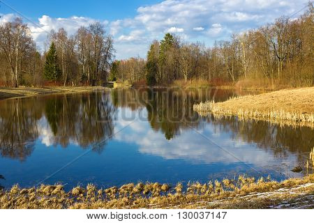 Beautiful spring landscape with reflection on the sunny day