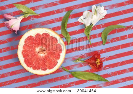 Popart style red grapefruit on a striped background top view. Ripe fruit with flowers on striped background in blue and red stripes.