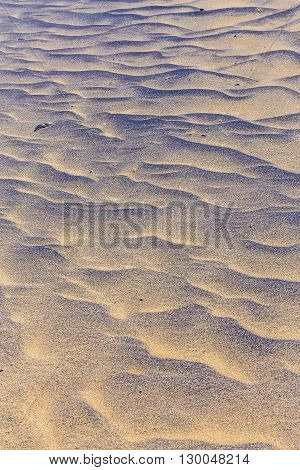 Abstract Detail Of Sand Dunes During Sunrise - Fuerteventura Canary Islands Spain