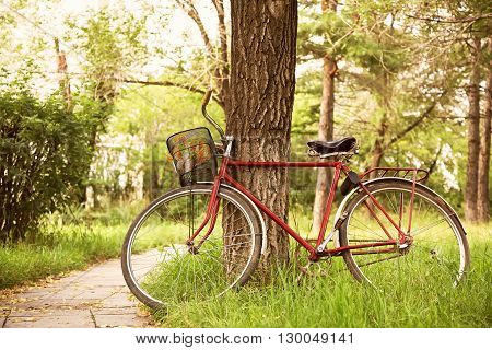 Vintage bicycle waiting near tree in the park. bike outdoor