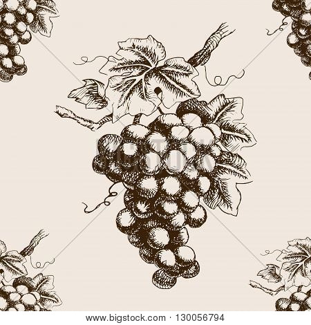Bunch of grapes  sketch style seamless pattern vector illustration. Old engraving imitation.