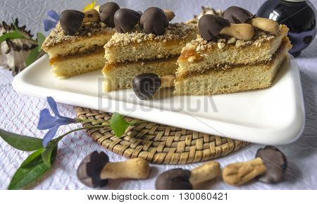The white rectangular crockery with slices of cake with chocolate mushrooms