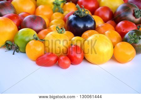 Heirloom colorful tomatoes fruits from organic garden