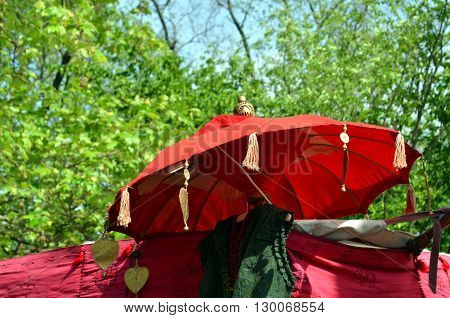oriental umbrellas as decoration on a marked