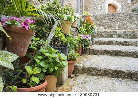 flowerpots street in the tourist island of Mallorca, Valdemosa city in Spain