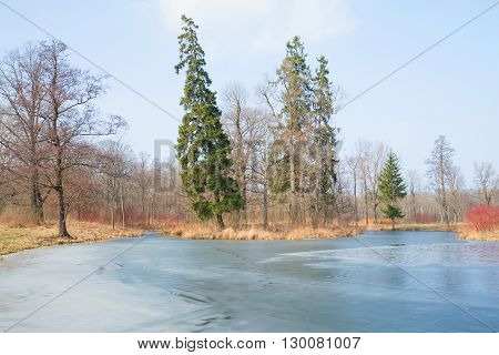 Sunny march day in the park, Peterhof, Russia
