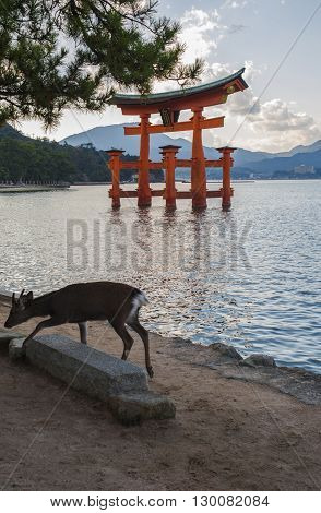 Torii Gate near the Itsukushima known as Miyajima island. UNESCO World Heritage Site. Hiroshima Prefecture Japan.