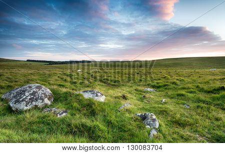 Wide Open Space On Bodmin Moor