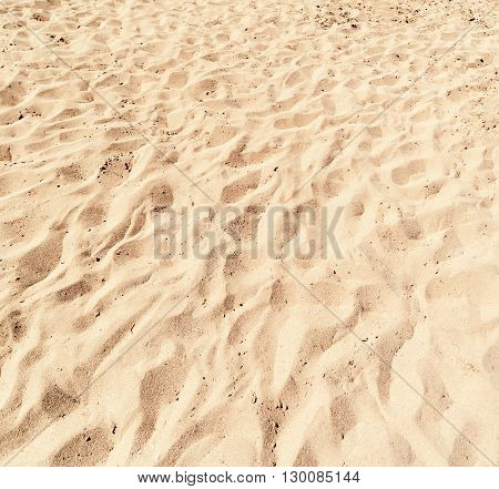 Sand Texture / sand pattern / White Sand Background close up / Beach