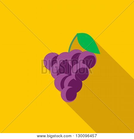Bunch of wine grapes icon in flat style with long shadow