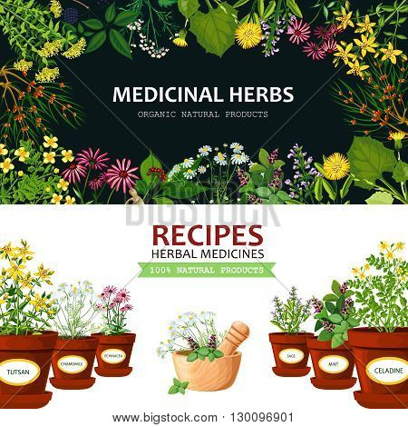 Color horizontal banners with title depicting medicinal herbs in clay mortar and recipes vector illustration