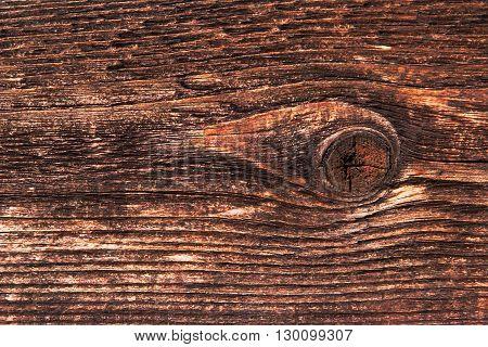pozadí s dřevěným motivem a kresbou se sukem