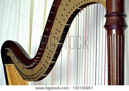 Pedal Harp Closeup