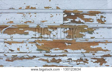 Cracking and peeling lead paint off of wood sliding.