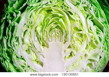 Young Cabbage. To Cut A Young Cabbage. Green Cabbage. To Cook Food. Fresh Vegetables. To Prepare The