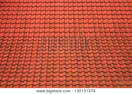 Background from a red tile roof with small spots from an atmospheric precipitation