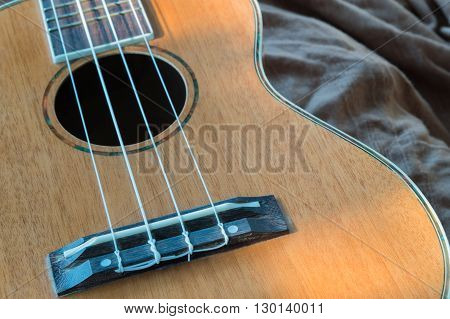 abstract portrait of a ukulele on a fabric background