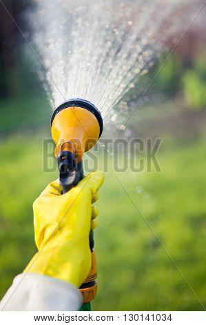 Hand with garden hose watering plants gardening concept