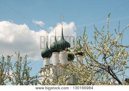 Rostov the Great in spring the kremlin The Church Of St. Gregory the Theologian focus on the leaves. The Golden Ring of Russia