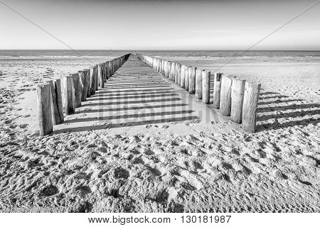 Monochrome image of two parallel rows of weathered wooden poles and their shadows on a sunny Dutch beach in winter. It is low tide now.
