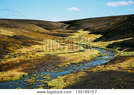 Landscape with moss in Iceland. Mountain tourism and volcanic area