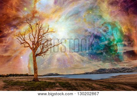 Alien Planet Landscape - Fantasy Art