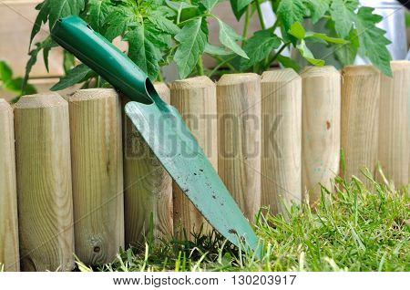 shovel against a wooden border in a vegetable patch