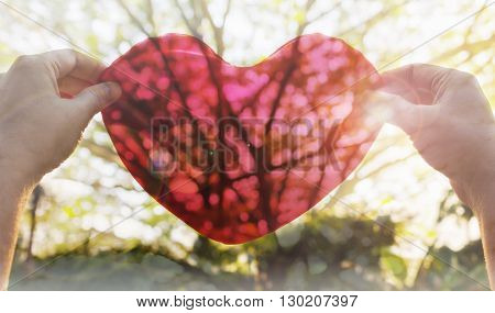 Hands Hold Or Raise Big Red Heart To Sky With Lens Flare And Sunlight On Tree Shadow Background