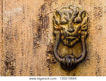Lion head knocker on a rust wooden door background