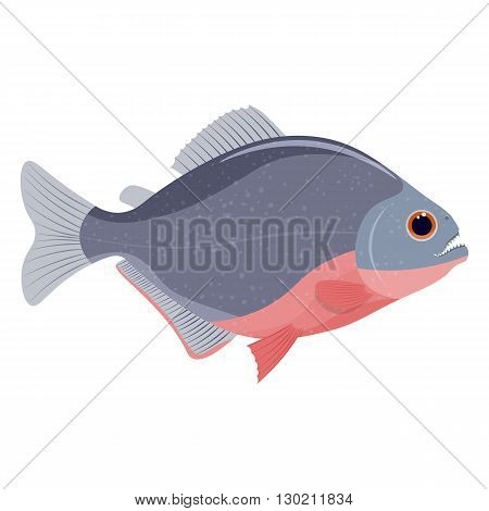 piranha fish vector illustration isolated on a white background