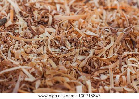 fresh different kinds of wood shavings background