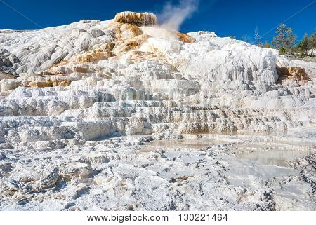 The white limestone formations of the Palette Spring create stunning earth forms that resemble natural basins Mammoth Hot Springs Yellowstone National Park