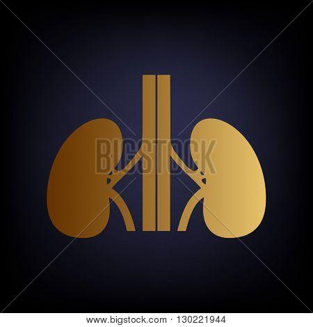 Human kidneys sign. Golden style icon on dark blue background.