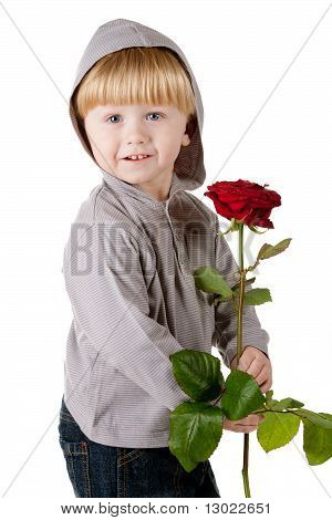 Little beautiful boy with red rose