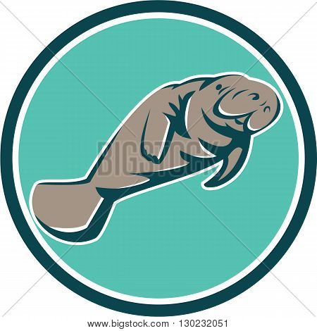 Illustration of a manatee sea cow set inside circle on isolated background done in retro style.