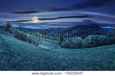 Rural Meadow With Trees In Mountains At Night