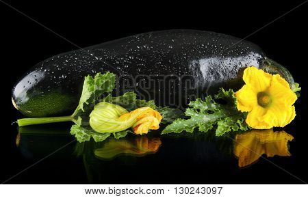 Closeup Wet Zucchini With Flower On Black Background